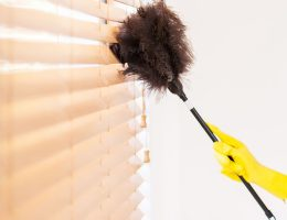 Best dusters for blinds.
