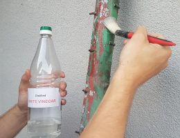 Will vinegar remove paint from metal.