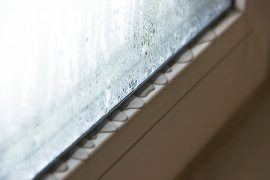 How to absorb condensation on windows.
